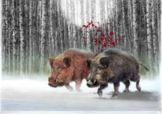 "Saatchi Art Artist Peter Heydeck; Drawing, ""Ballad of boar."" #art"
