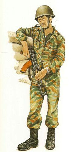 Syrian army, Golan 1973, pin by Paolo Marzioli