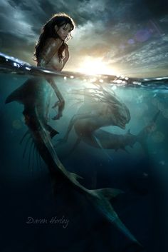 Mermaid by Daren Horley love the idea that beauty is above the surface but death lingers below