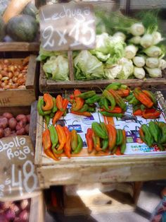 Alessandra Zecchini: Fruit and vegetable market in Montevideo, and where feijoas (guayabas) come from