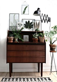 Time for Fashion » Decor Inspiration: Botanical
