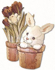Peek-A-Boo Bunny Intarsia Project Pattern