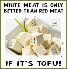 I frickin' love tofu