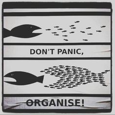 Funny pictures about Don't panic. Oh, and cool pics about Don't panic. Also, Don't panic photos. Me Quotes, Motivational Quotes, Inspirational Quotes, Motivational Pictures, Image Citation, Don't Panic, Teamwork, Life Lessons, Politics