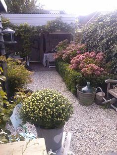 My home my garden...
