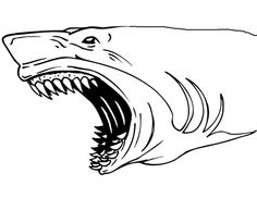 Coloring Page Fascinating Pages Sharks Shark Jaws Pagepng And Dolphins Of Whale