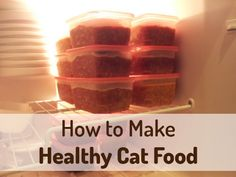 Homemade cat food recipes homemade cat food cat food recipes and homemade cat food for your cat ive been saving money on cat food forumfinder Image collections