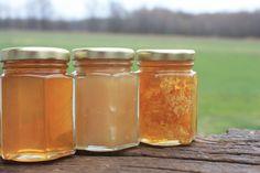 3 Raw Varieties of Honey from the Bee Hive by KlineHoneyBeeFarm