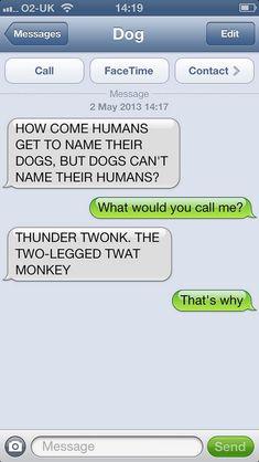 Funny Memea, Funny Texts Jokes, Funny Disney Memes, Text Jokes, Funny Cartoons, Tumblr Funny, Funny Girls, Epic Texts, Disney Cartoons
