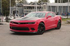 What's the best muscle car bang for your buck between the Chevrolet Camaro SS 1LE vs Dodge Challenger HEMI 392 Scat Pack Shaker vs Ford Mustang GT