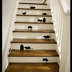 Just for fun!... But what if one of them moved!........ #decorzilla  #funny #stairs #mice #pest #white #timber #fun #house #interiors #design #paint #cheerful #decor #cheerful #tomandjerry #home #miceonstairs #inspiration #art #instagramdesign #padgram