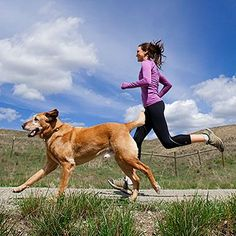 Exercising your dog fun 13 Fun Ways to Work Out With Your Dog - Because no one loves to exercise more than your four-legged friend. Buddy Workouts, Fun Workouts, Outdoor Workouts, Dog Items, Dog Training Tips, Crate Training, Pet Health, Health Tips, Four Legged