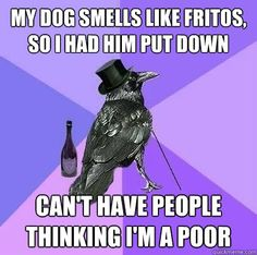 My dog smells like Fritos, so I had him put down can't have people thinking I'm a poor