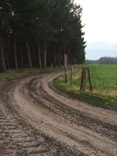 Kempen - wandeling - natuurpunt
