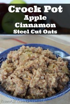 Crock Pot Apple Cinnamon Steel Cut Oats