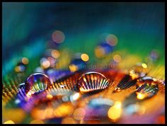 Rays of Light by Lilyas