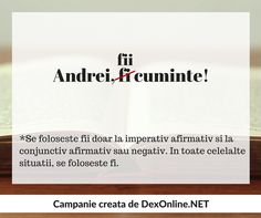 Dexonline promoveaza limba romana vorbita corect #salveazalimbaromana #gramatica Grammar, Parenting, Study, Child, Writing, Education, School, Quotes, Literatura