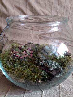 Mon premier terrarium