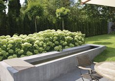 (back yard remodel) Garden Pool, Water Garden, Patio Windows, Landscaping On A Hill, Luxury Landscaping, Landscaping Company, Landscape Arquitecture, Yard Furniture, Water Element