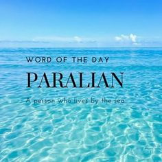 Word Of The Day! • #paralian #wordoftheday #words #books #literature #photooftheday #school #definition #instagram