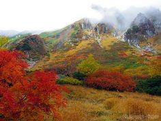 錦秋の千畳敷カール (Autumn Colored Senjojiki Cirque) #Japan #Autumn #District