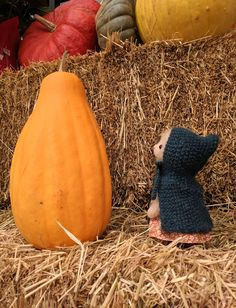 Autumn Adventures. Matilda bunny is on the hunt for the perfect pumpkin. Bunny pattern available for purchase at sotreasured.com. Free clothing pattern add-on's available in the sotreasured.com newsletters!