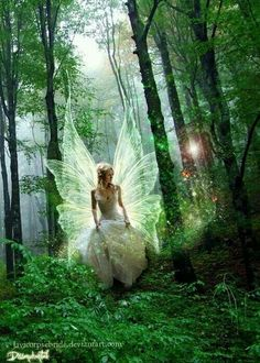 A Fairy Princess in the green, green forest. My fantasy. Fairy Dust, Fairy Land, Fairy Tales, Forest Fairy, Magical Forest, Woodland Fairy, Forest Elf, Magical Creatures, Fantasy Creatures