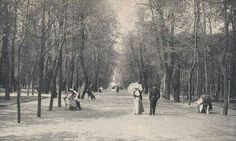 "The Summer Garden,St. Petersburg, Russia in 1900. ""AL"""