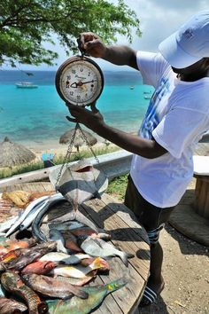 Fish doesnt get any fresher than this....#curacao