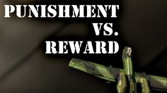 Is Punishment or Reward More Effective?    Psychology Vs Biology Vs Culture Vs Statistics of  Chance For Innovators