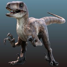 Jurassic Park Characters, Jurassic World Dinosaurs, Jurassic Park World, Prehistoric World, Prehistoric Animals, Dinosaur Tattoos, Creature Design, Mythical Creatures, Cool Artwork