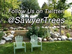 Are you on Twitter? Follow us at https://twitter.com/SawyerTrees#utm_sguid=151607,859c0bd8-0b77-b48d-52d1-e21367f20570