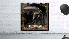 Lusitano Horse - Cris Rodrigues