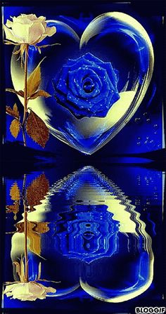 The perfect Blue Rose Reflection Animated GIF for your conversation. Discover and Share the best GIFs on Tenor. Flowers Gif, Beautiful Rose Flowers, Blue Flowers, Romantic Roses, Beautiful Love Pictures, Beautiful Gif, Heart Wallpaper, Flower Wallpaper, Tumblr Roses