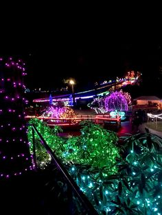 Where to find holiday lights near Seattle