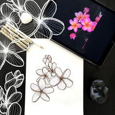 Day 23 #30ideas30days #illustration #flowers #blackandwhite #drawing #patternly.design #30ideias30dias #ilustração #flores #pretoebranco #desenhoobservacao #decolalab2016 #oficinaamandamol