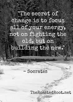 """The Secret of change is to focus all of your energy, not on fighting the old, but on building the new."" - Socrates #quote #wordsofwisdom"