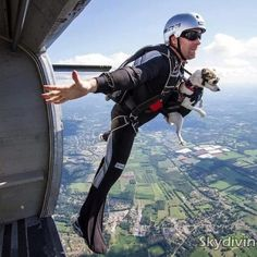 Doggy skydive! AWESOME!!!