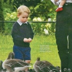 The pictures of Princess Charlotte and Prince George Feeding Birds