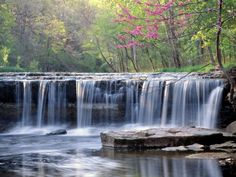 Fabulous Collection of Waterfalls photos, Waterfalls pictures and Waterfalls images showcasing the awesome nature and its beauty. Displaying images 1 to State Parks, Big Basin Redwoods, Waterfall Wallpaper, Columbus Indiana, Beautiful Places, Beautiful Pictures, Beautiful Scenery, Nature Pictures, Spring Pictures