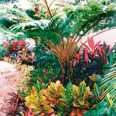 30 Top Tropical Garden Ideas – Home/Decor/Diy/Design - tropical garden ideas Tropical Garden Design, Tropical Landscaping, Tropical Plants, Garden Landscaping, Tropical Gardens, Landscaping Ideas, Modern Landscaping, Tropical Patio, Natural Landscaping