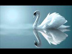 Artículos en la categoría Música para el Alma | | MÚSICA PARA EL ALMA Blog Svetlano4ka68: LiveInternet - Servicio ruso diarios online