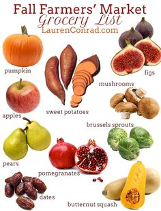 Lauren Conrad's Fall Farmers' Market Grocery List