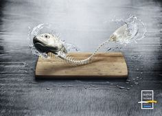 fish ads - Google 検索