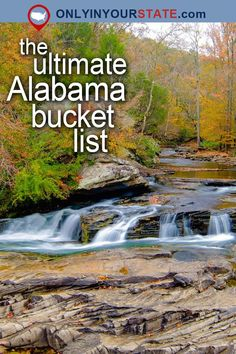 Travel | Alabama | Attractions | USA | Places To Visit | Things To Do | Beautiful Places | Natural Wonders | Outdoor | Adventure | Dismals Canyon | Planet Earth | State Parks | Restaurants | Places To Eat | Wildlife Refuge | General Stores | Nature Preserve | Candy Shop | Vintage | Waterfalls | Schoolhouse Restaurant | Gardens | Small Towns | Saloon | Neversink Pit | BBQ | Natural Springs | Safari | Beaches | Diner | Caves | Natural Bridge