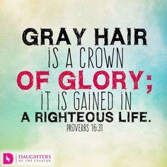 Grey Hair Don't Care, Gray Hair, Lilac Hair, Pastel Hair, White Hair, Blue Hair, Grey Hair Quotes, Proverbs 16 31, Life Proverbs