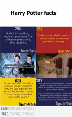 (100+) harry potter facts | Tumblr