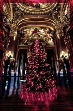 Christmas ~ Opera Garnier, Paris, France
