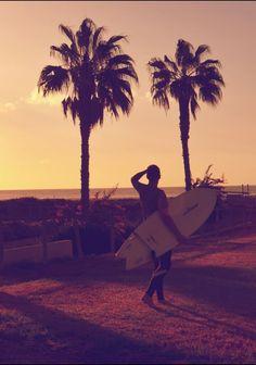 Wat een prachtig beeld! Echt vakantie...    http://www.hotelkamerveiling.nl/    #vakantie #surfen #surf #palmboom #reizen #reis