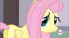My Little Pony Characters, My Little Pony Comic, Tikal, Amy Rose, Fluttershy, Mlp Pony, Pony Pony, Hasbro Studios, Pokemon